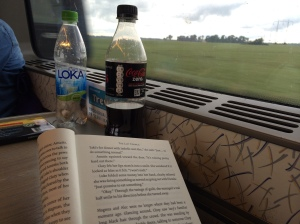 Leser på togtur i Sverige