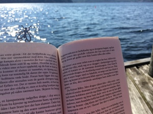 En av mange fine lesestunder i 2014. På bryggekanten på hytta på sørlandet :)